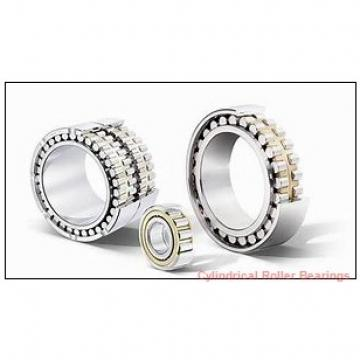 FAG NUP2213-E-M1-C3  Cylindrical Roller Bearings