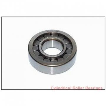 FAG NUP315-E-M1-P63-F1  Cylindrical Roller Bearings